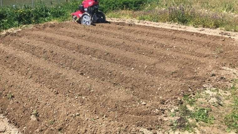 耕運機で耕した畑