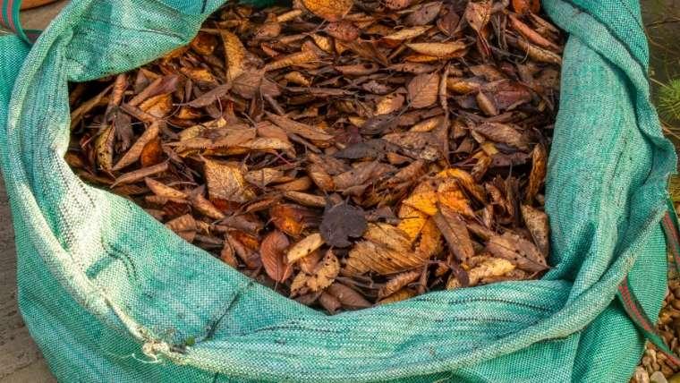 ビニール袋で落ち葉堆肥