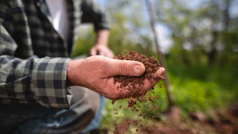 土を調べる