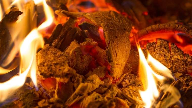 草や木を燃やす
