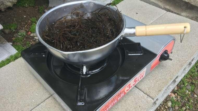 海藻を鍋にひとつかみ