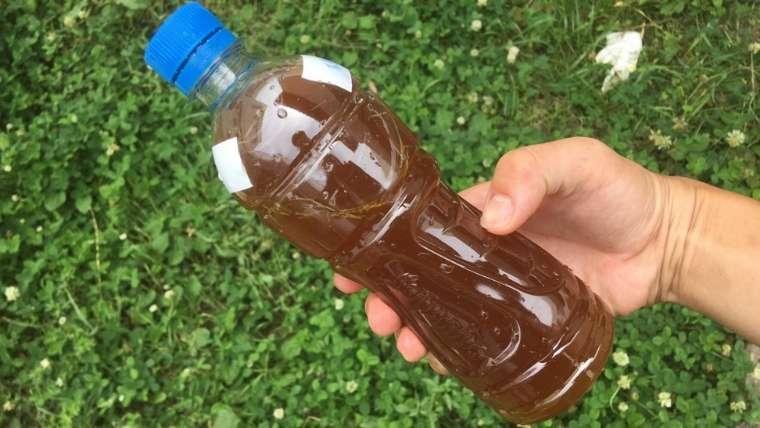 雑草発酵液