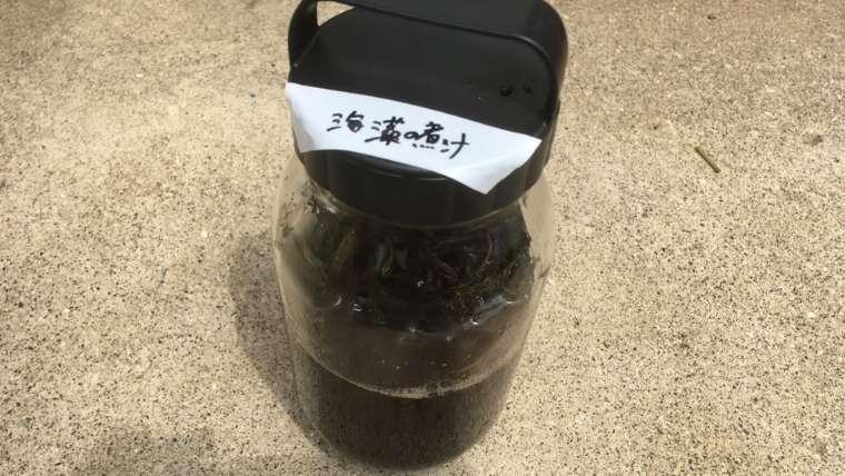 海藻の酢漬け