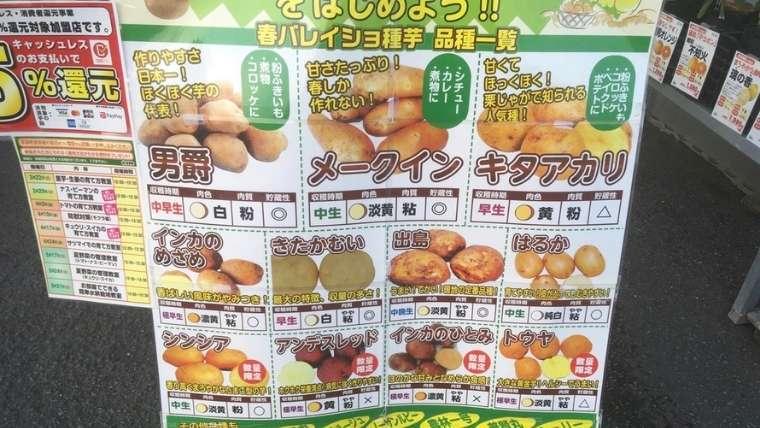 ジャガイモの品種