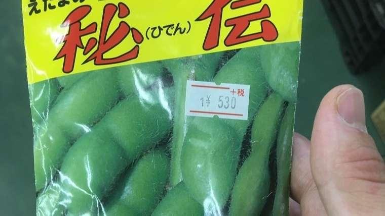 枝豆の品種