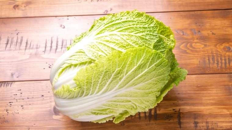 白菜の品種