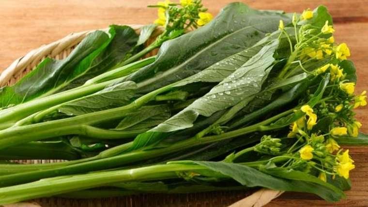 アスパラ菜の収穫