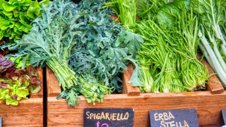 【イタリア野菜】エルバステラ