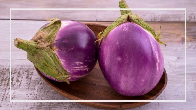 イタリアナスの育て方・栽培方法